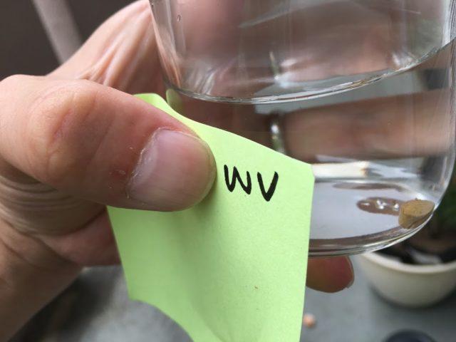 ホワイトヴェール効果比較実験