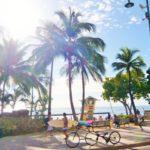 ヘリオケアアンチオキシダントの特徴とハワイでの購入場所