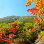 秋の日焼け止めと日焼け対策